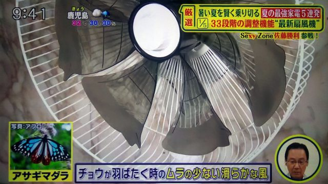 【シューイチ】夏家電まとめ|プラズマクラスター扇風機・空調寝具・ギガたこ焼き器・フランクフルトメーカー・BALMUDAスピーカー・着るクーラー
