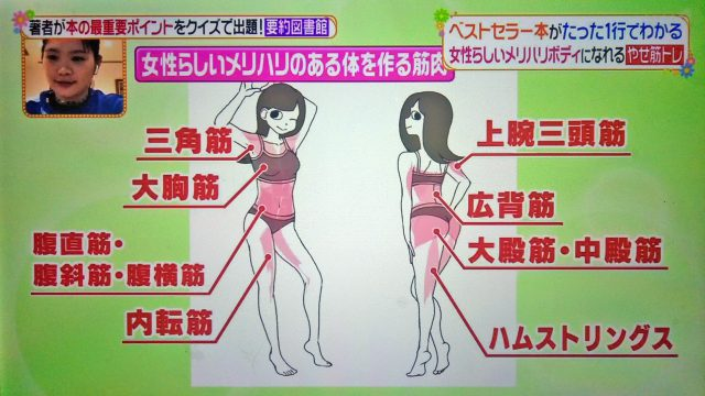 【ヒルナンデス】やせ筋トレ姿勢リセットのやり方|とがわ愛さんが教えるダイエット法
