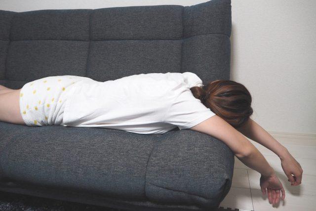 【火曜サプライズ】ネックピローX(yogibo)のお取り寄せ
