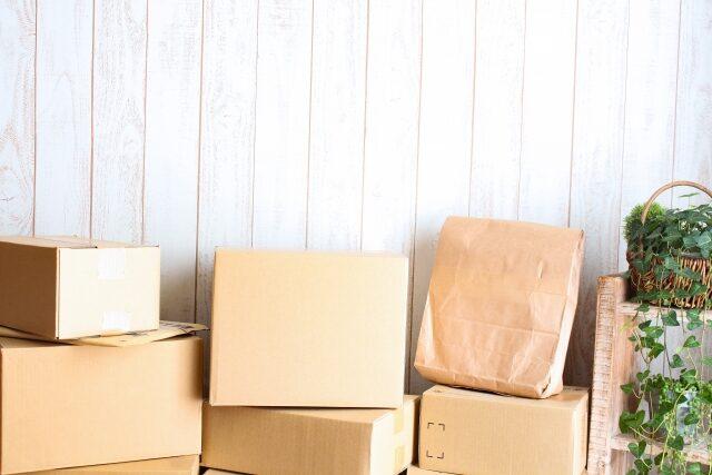 【沸騰ワード10】矢田亜希子コストコ2021春の新商品ベスト8|オールインワン保湿フォーム・鼻うがいキット・窓用クリーナー・布団圧縮袋・フタ付きスタッキングボウルなど