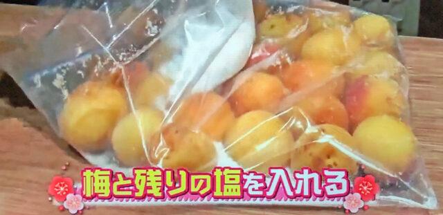 【ヒルナンデス】梅干しの作り方|保存袋で作る簡単レシピ