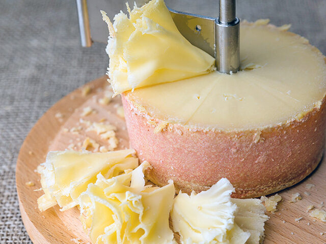 【夜会】米倉涼子おすすめチーズ『テットドモワンヌ』の通販お取り寄せ|白ワインに合う鉄板手土産