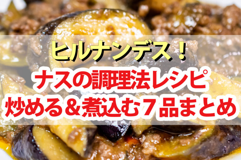 【ヒルナンデス】ナスの炒める&煮込むレシピ7品まとめ プロが教える調理法