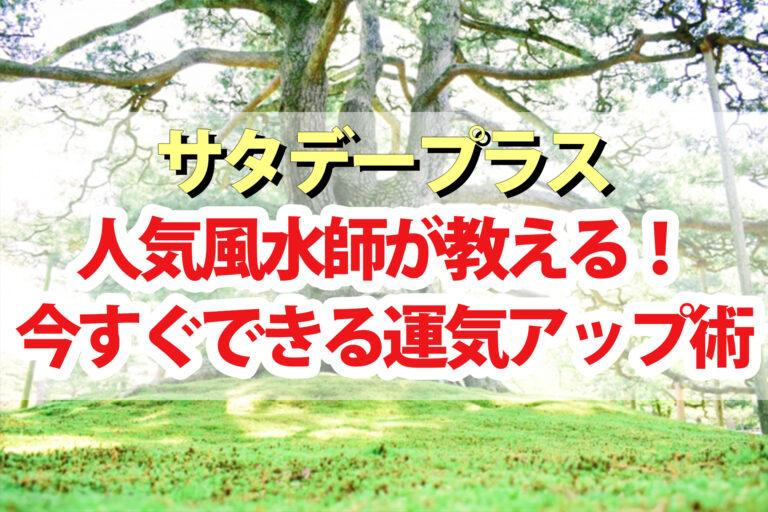 【サタプラ】風水師の天野千恵里さんが教える運気アップ術 金運を爆上げする開運アイテム